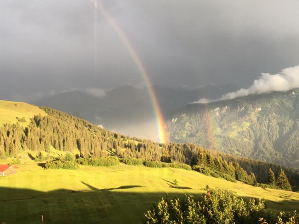 Naturspektakel Regenbogen Gewitterzelle