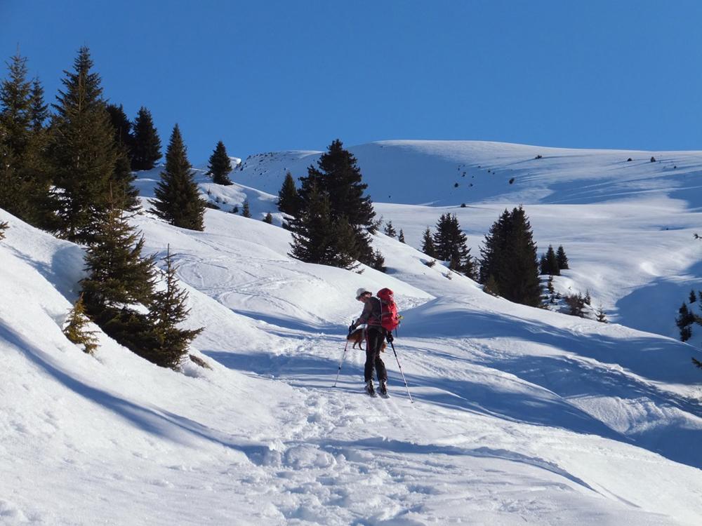 Skitouren in wundervoller Winterlandschaft